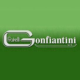 F.lli Gonfiantini